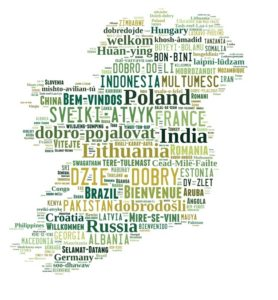Irish Council on Immigrants wordle map of Ireland