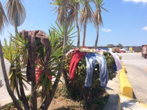 Eko - drying clothes over bush